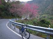 花好月圓篇--武嶺濺雪單車行--20120204:RIMG0199.JPG