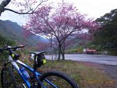 花好月圓篇--武嶺濺雪單車行--20120204:RIMG0202.JPG