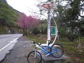 花好月圓篇--武嶺濺雪單車行--20120204:RIMG0204.JPG