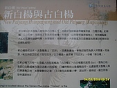 單車高山環島13天(980223-0307)--第十天:SDC11514.JPG