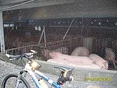 人倫林道主線白石礦支線卓棍溪環線單車行--981102:SDC12320.JPG