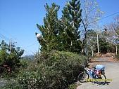 單車高山環島13天(980223-0307)--第一天:SDC10990.JPG