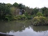 準園生態莊園:P1100712.JPG