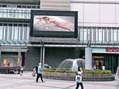 巨城購物中心:13179116_890274291082471_5026236062283448870_n.jpg