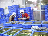 餐盒便當廠訪視:好口味食品廠   ---  文賢國中 5