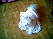 布丁1(2007~2009):布丁大戰內衣5