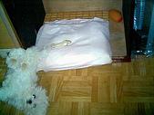 布丁1(2007~2009):布丁床墊製作6