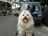 布丁1(2007~2009):照片 170.jpg