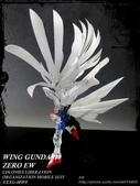 RG-天使:DSC07384.JPG