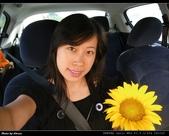 2008.08.23 向陽農場,星海之戀:IMGP0233.jpg