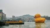 2014.01.04 基隆黃色小鴨,新北市歡樂耶誕城:P1020224.jpg