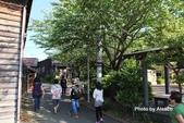 日本中部北陸立山黑部之旅.DAY5:DSCF0309.JPG