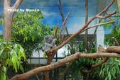 2018.06.30 台北市立動物園,福德坑環保公園滑草:L1240484.JPG