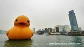2014.01.04 基隆黃色小鴨,新北市歡樂耶誕城:P1020342.jpg