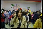 2008.02.16 平溪天燈節:IMGP3395.jpg