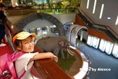 2018.06.30 台北市立動物園,福德坑環保公園滑草:L1240436.JPG