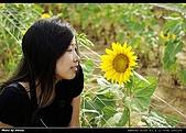 2008.08.23 向陽農場,星海之戀:_IGP6515.jpg