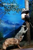 2018.06.30 台北市立動物園,福德坑環保公園滑草:L1240412.JPG