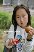 2020.02.02 芎林金城武樹,鹿鳴坑觀光果園採柑橘:P1330415.JPG