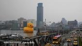 2014.01.04 基隆黃色小鴨,新北市歡樂耶誕城:P1020178.jpg