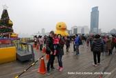 2014.01.04 基隆黃色小鴨,新北市歡樂耶誕城:P1020186.jpg