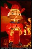 2008.02.24 台北101,桃園燈會:_MG_1726.jpg
