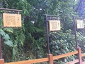 三義佛頂山/苗栗南庄風景:三義木雕風景區廣盛四月雪步道