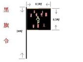LOGO:大港關聖帝君大關帝黑令旗圖片1.JPG
