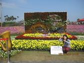 2013新社台中國際花毯節(102.11.16, 星期六):2013新社台中國際花毯節 (10).jpg