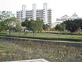 豐原921愛心紀念公園:IMG_1552.JPG