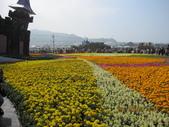 2013新社台中國際花毯節(102.11.16, 星期六):2013新社台中國際花毯節 (20).jpg