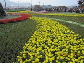 2013新社台中國際花毯節(102.11.16, 星期六):2013新社台中國際花毯節 (4).jpg