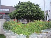 台中市立葫蘆墩文化中心1001125:台中市立葫蘆墩文化中心1001125 (4).JPG