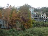 關西  馬武督糯米橋:P1011287.JPG