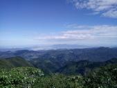 復興  東眼山森林步道:DSC_8963.JPG