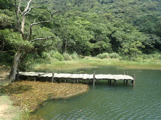P8136339.JPG - 汐止  新山夢湖