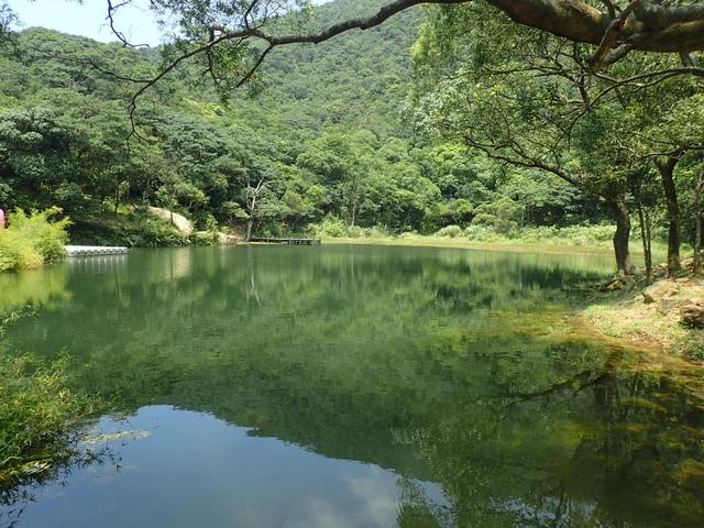 P8136345.JPG - 汐止  新山夢湖