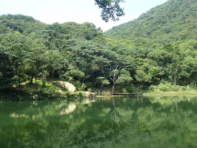 P8136348.JPG - 汐止  新山夢湖