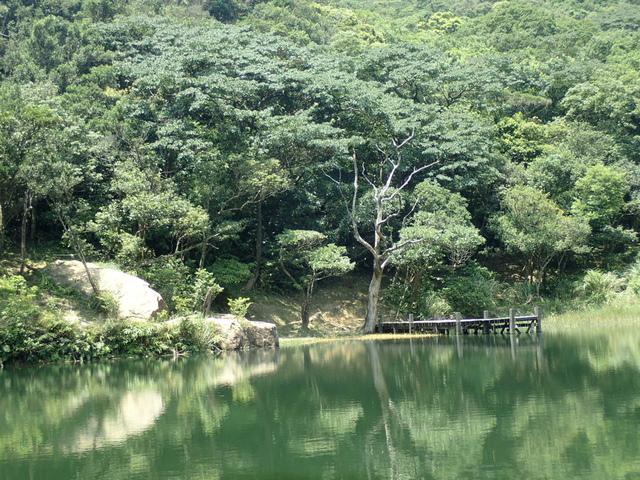 P8136349.JPG - 汐止  新山夢湖