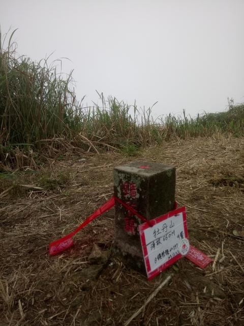 DSC_2857.JPG - 瑞芳  牡丹山