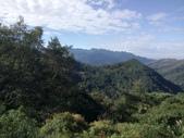 復興  東眼山森林步道:DSC_8942.JPG