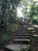 復興  東眼山森林步道:DSC_8952.JPG