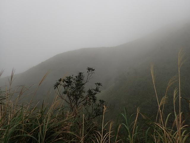 P1203515.JPG - 瑞芳  牡丹山