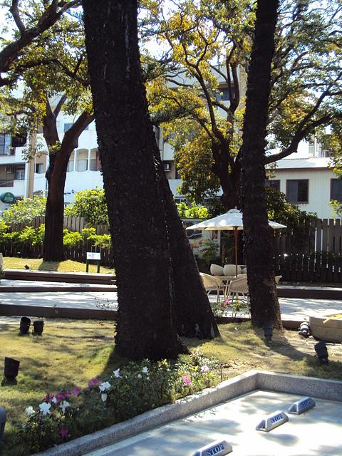 DSC08335.JPG - 台南市長官邸
