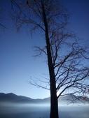 清境農場  晨光之美:DSC_6622.JPG
