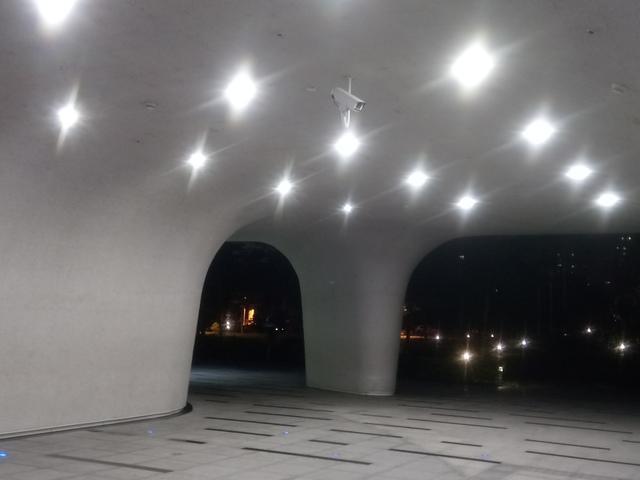 DSC_1947.JPG - 台中  街路隨拍  (15)