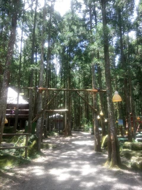 DSC_4144.JPG - 再訪  關西  馬武督探索森林