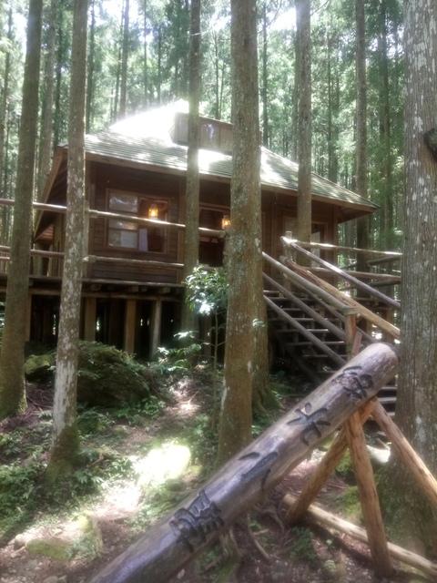 DSC_4147.JPG - 再訪  關西  馬武督探索森林