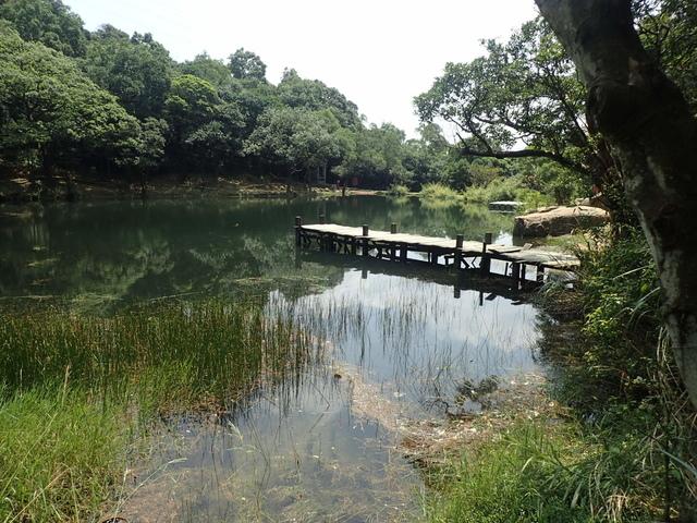 P8136330.JPG - 汐止  新山夢湖