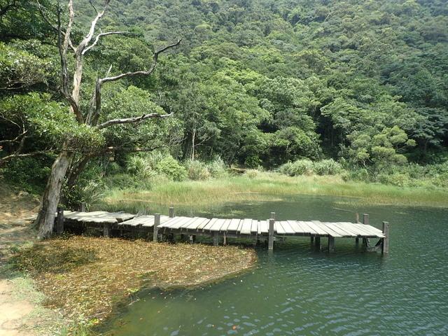 P8136338.JPG - 汐止  新山夢湖